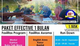 Program Effective 1 Bulan